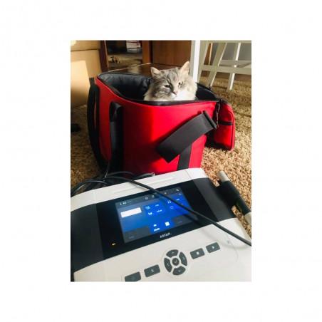 PhysioGo 400C - aparat do laseroterapii w weterynarii