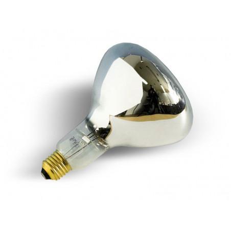 Żarówka do lampy sollux - gwint E27