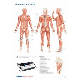 Plansza dydaktyczna sonoterapia w praktyce