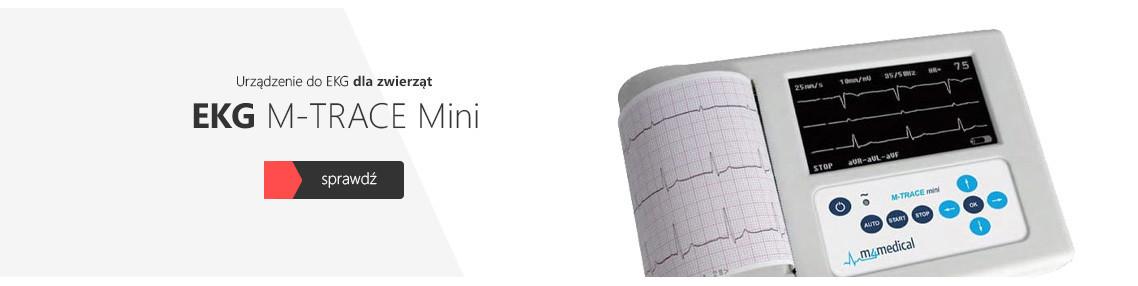 Elektroterapia w weterynarii - akcesoria - Sklep Astar